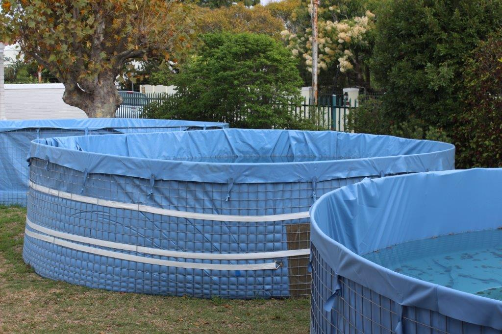 Porta-pools-used-to-store-pools-existing-water-during-revamping-of-pools